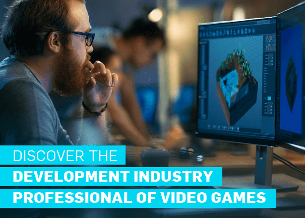 Development Industry Professional of Video Games